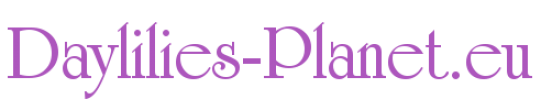 Daylilies-Planet